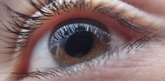Prevención glaucoma